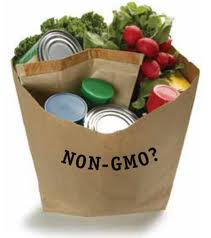 No-GMO-Shopping-Guide